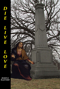 Book cover image for Die Live Love